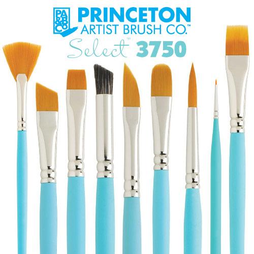 Princeton Select 3750