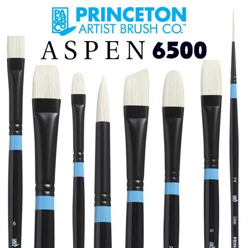 Princeton Aspen 6500