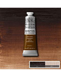 Winsor & Newton Winton Oil Color 37ml - Burnt Umber