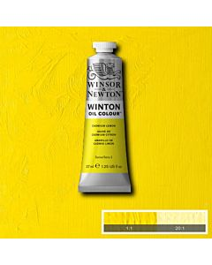 Winsor & Newton Winton Oil Color 37ml - Cadmium Lemon