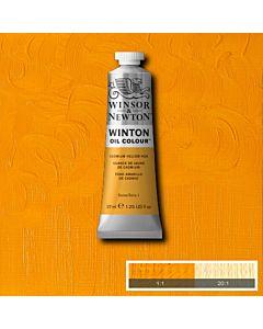 Winsor & Newton Winton Oil Color 37ml - Cadmium Yellow Hue