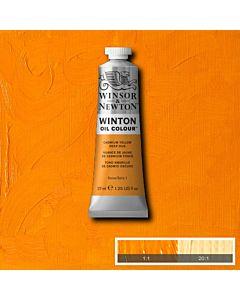 Winsor & Newton Winton Oil Color 37ml - Cadmium Yellow Deep hue