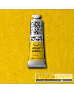 Winsor & Newton Winton Oil Color 37ml - Cadmium Yellow Pale Hue