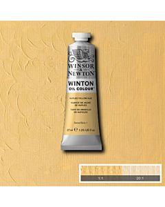 Winsor & Newton Winton Oil Color 37ml - Naples Yellow Hue