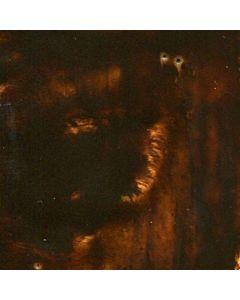 Encaustic 40ml Burnt Umber