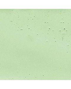 Encaustic 40ml Celadon