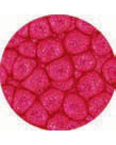 Prisme 45Ml English Red