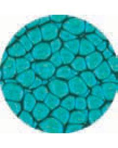 Prisme 45Ml Turquoise