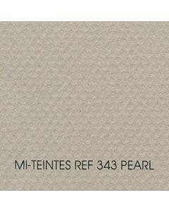 Canson Mi-Teintes Sheet 19x25 - Pearl #343