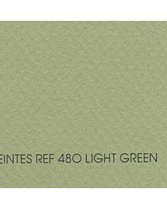 Canson Mi-Teintes Sheet 19x25 - Light Green #480