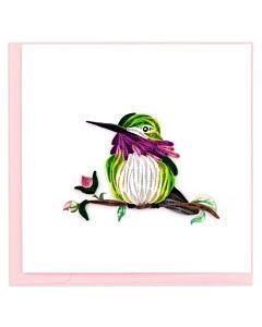 Quilling Card - Calliope Hummingbird