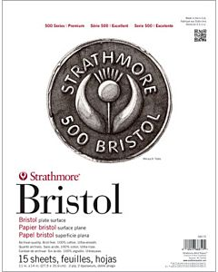 Strathmore 500 Series Bristol - 2ply - Plate Surface - 23x29 Sheet