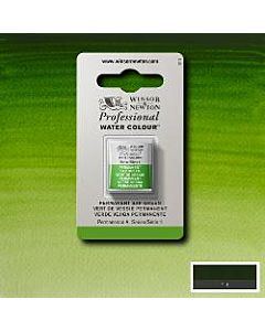 Winsor Newton Professional Watercolor - Half Pan - Permanent Sap Green