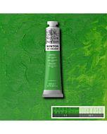 Winsor & Newton Winton Oil Color 200ml - Permanent Green Light
