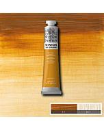 Winsor & Newton Winton Oil Color 200ml - Raw Sienna
