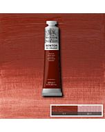 Winsor & Newton Winton Oil Color 200ml - Indian Red