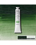 Winsor & Newton Artists' Oil Color 200ml Tube - Terre Verte
