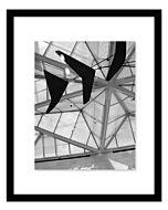 Malden Deisigns - Black Floater - 11x14