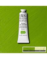 Winsor & Newton Artists' Oil Color 37ml - Cadmium Green Pale
