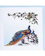 Quilling Card - Peacock